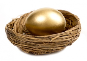 Golden Egg for Retirement
